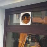 caffe-bar-R-M FRIGO-Rijeka-projektiranje-kafića-restorana-ishodovanje-dozvola-izrada-ugradnja-ventilacija-zakon-pušenja-pušački-ventilator-VORTICE-reverzibilni-odsis-dosis